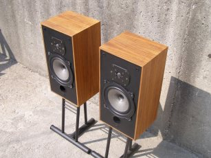 B&W DM-10s